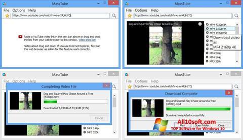 Screenshot MassTube für Windows 10