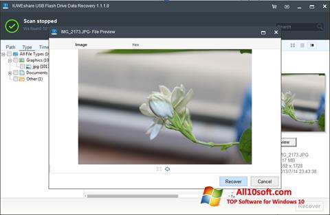 Screenshot USB Flash Drive Recovery für Windows 10